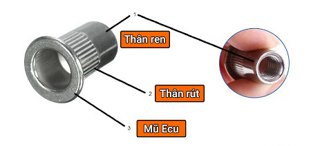 cấu tạo ecu tán